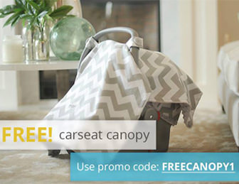 Free-Carseat-Canopy