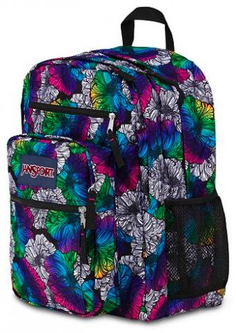 JanSport Backpack Kohl's