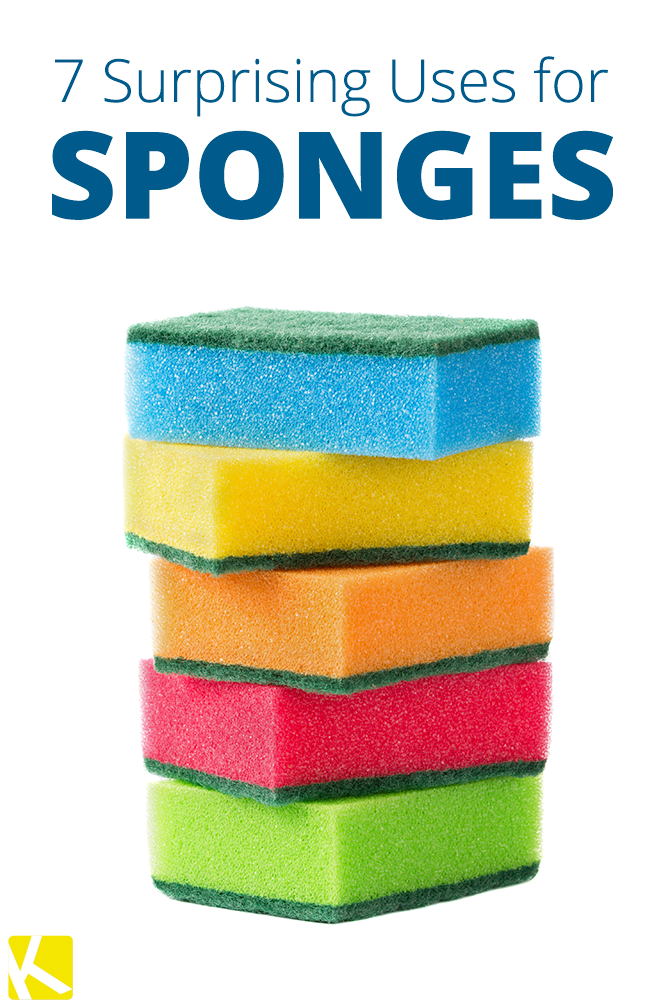 7+Alternative+Uses+for+Your+Common+Household+Sponge