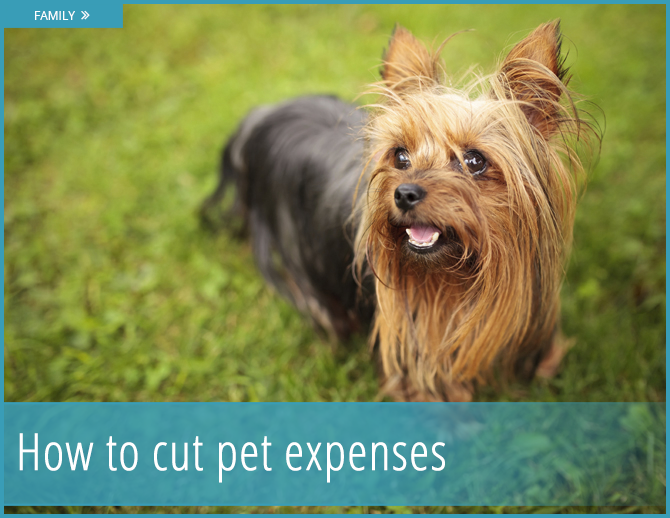If you think you're spending too much on your pet, read this!