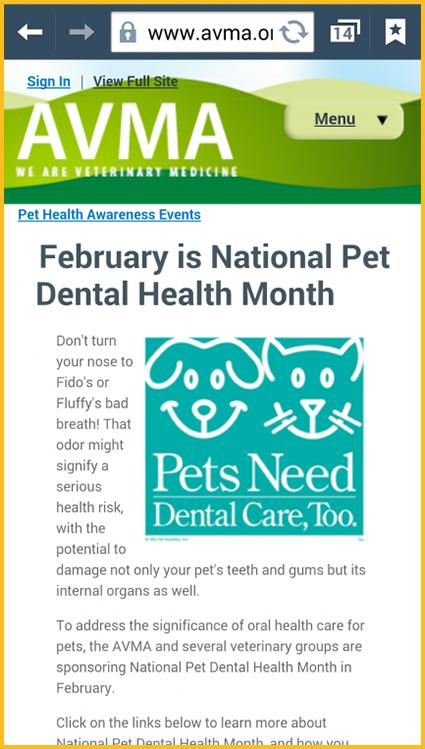 Dental health freebies - City deals black friday