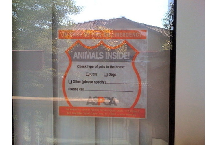 ASPCA Pet Safety Pack
