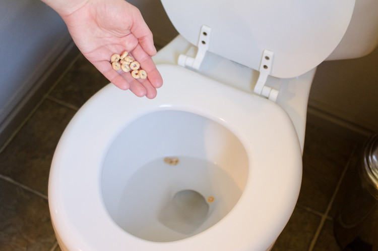 Potty train boys by putting cereal in the toilet and having them aim at them.
