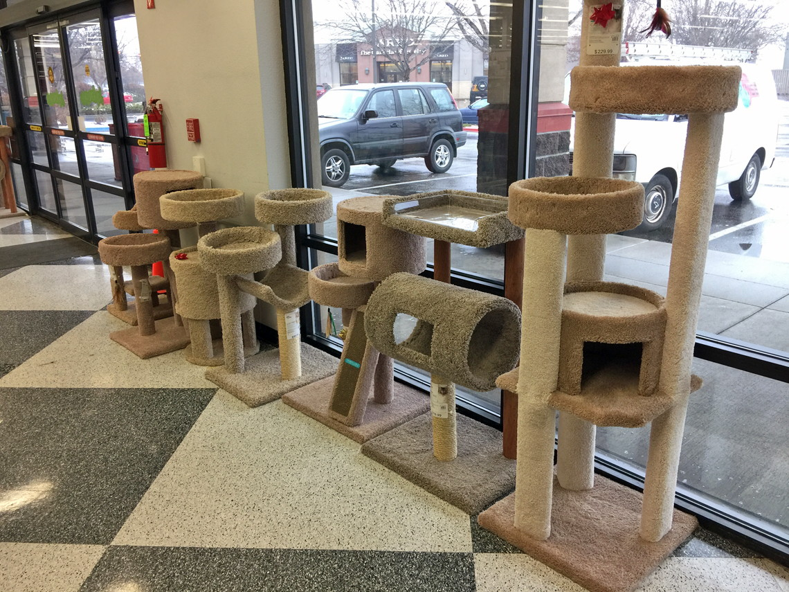 Nov 26,  · The Precision Pet Kitty Condo provides a large, vertical living area with plenty of room for playing and napping – two things at which cats excel! The two cozy lofts are set high so your cat can enjoy a great view from either perch in the cat condo.