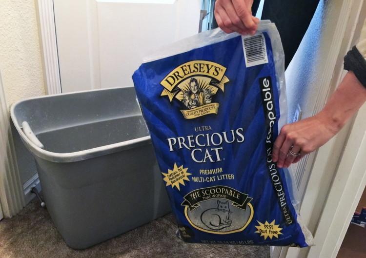 world\u0027s best cat litter price