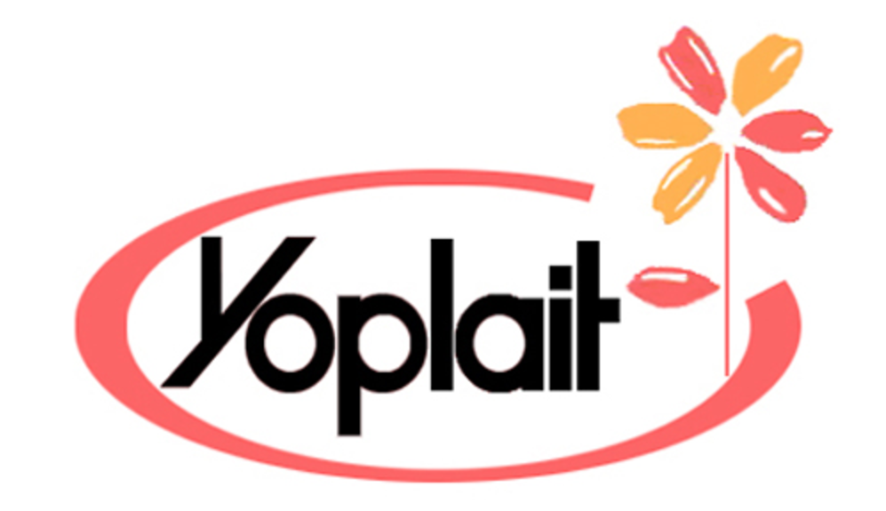 image regarding Yoplait Printable Coupons referred to as Yoplait Discount coupons - The Krazy Coupon Woman