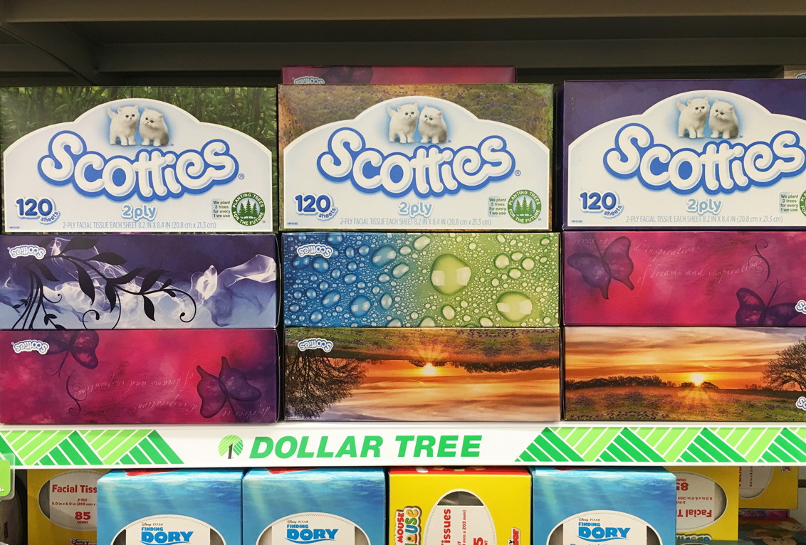 photo regarding Scotties Tissues Printable Coupon referred to as Scotties Facial Tissues, Merely $0.13 at Greenback Tree! - The