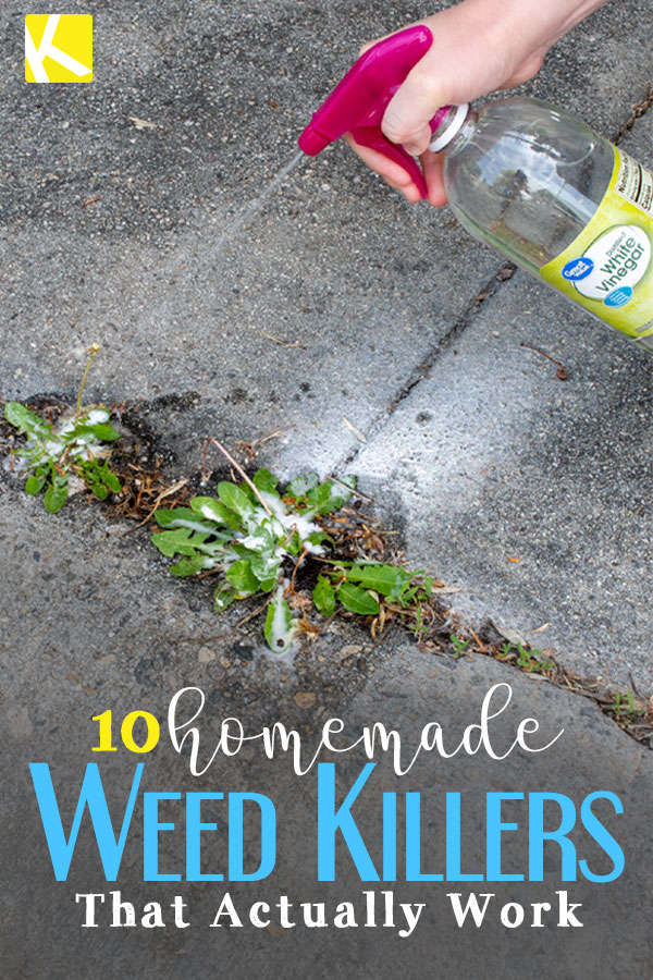 10 Homemade Weed Killers That Actually Work - The Krazy